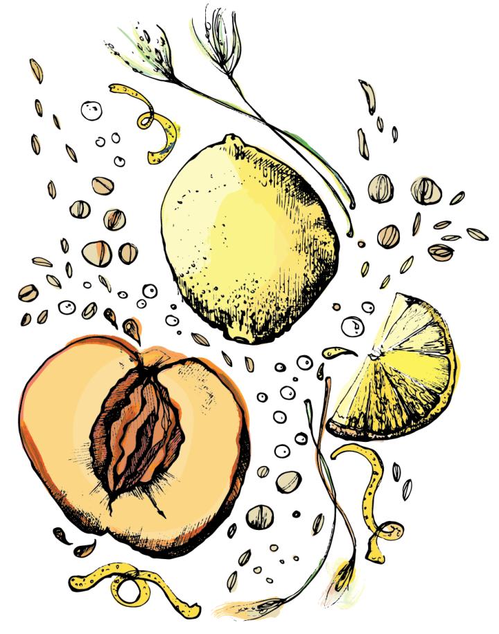 Perennial Peach Berliner Weiss