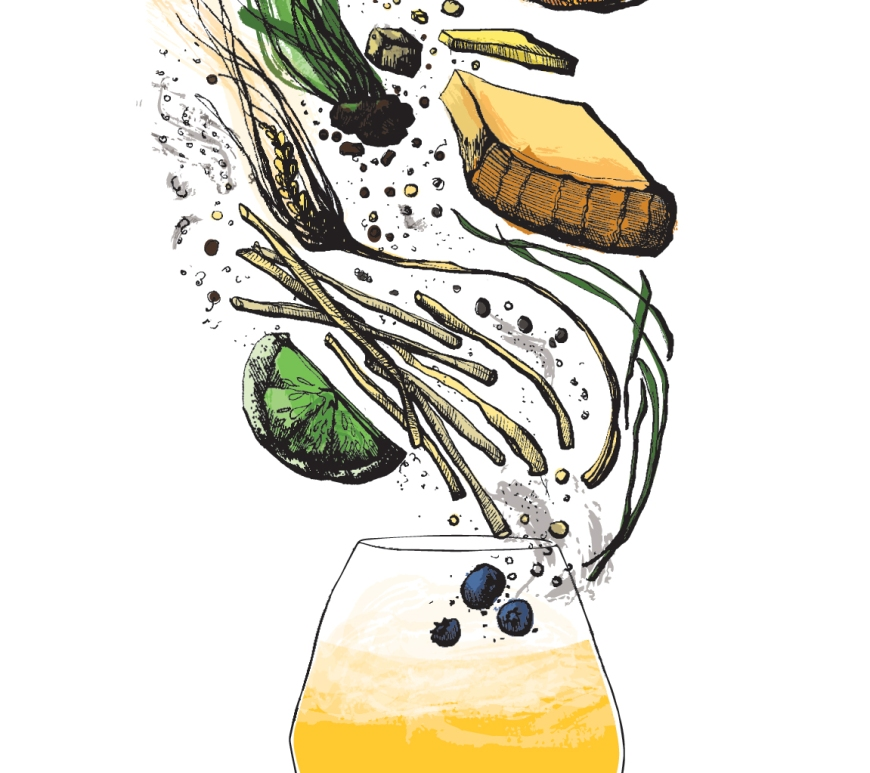 Brett beer flavor and aroma illustration
