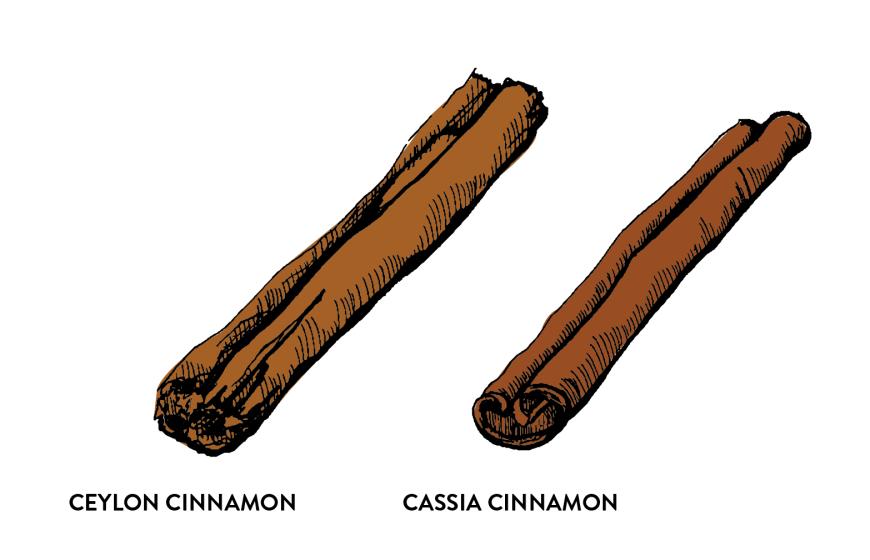 Ceylon Cinnamon and Cassia Cinnamon
